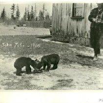Image of John Tulin With Two Bear Cubs - John Tulin with two bear cubs, 1905