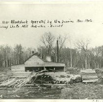 Image of Logging Mill near Blackduck in Itasca County operated by William Durrins - Logging Mill near Blackduck in Itasca County operated by William Durrins, 1900-1906. Wilcox Lumber Company Mill 1906-1912. - burned in 1912. Mill was originally moved from Blue Earth County in 1900 to Blackduck by train, then hauled in winter by train to 16-151-28 and operated by William Durrins until 1906.  Bought and remodeled by Wilcox Brothers Lumber Company, burned in 1912.