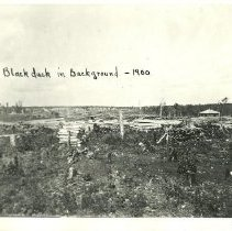 Image of Logged Land with Blackduck in Background - Blackduck in background, 1900 ( same as one of P-083)