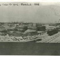 Image of T.M. Partridge Cedar Company Yard - T.M. Partridge Cedar Company Yard, Blackduck, 1906
