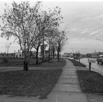 Image of Midway Drive 1955 - Midway Drive, Bemidji. Northland Woolens, Midway Motel, November 5, 1955.