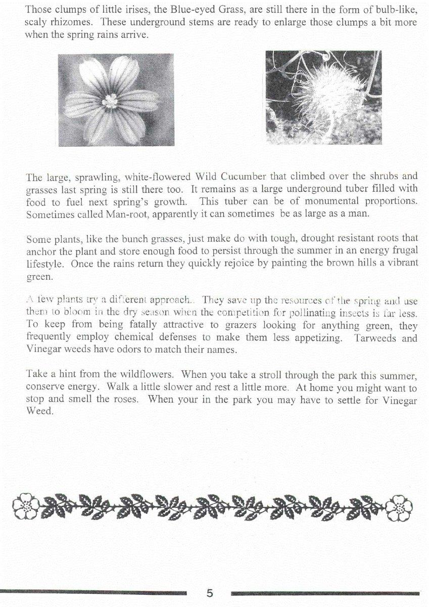 1997 2 2648 - Newsletter