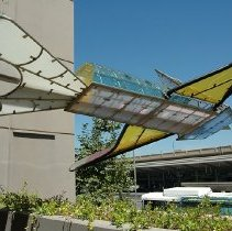 Image of Flying Gardens (Detail #2) - Dennis Oppenheim