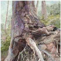 Image of Tree Series - Axelrad, Merle