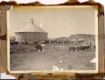 Image of Gaylor Dairy Farm
