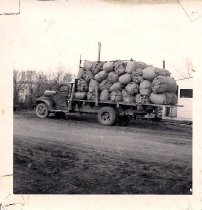 Image of Wool On Truck