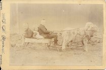 Image of Children in Toy Wagon