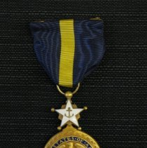 Image of Navy Service Medal, 2003.164a
