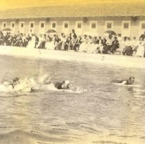 Image of Swimming Race 1899