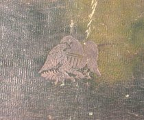 Image of Cover detail, eagle