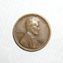 Image of Penny, head side