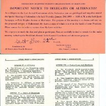 Image of 1989.108.053 - Federation of Jewish Women's Organizations of Maryland Records