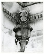 Image of mansion downspout, ca. 1970.