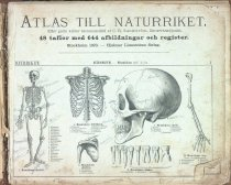 Image of 1st page of textbook from Sweden, 1880?