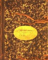 Image of Ledger book, 1881