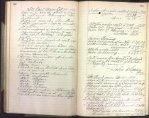 Image of Meeting minutes for Vega Literary Society, 1910