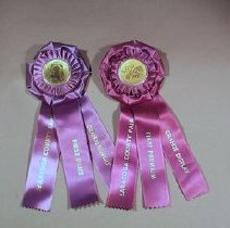 """Image of Double purple satin rosettes with plastic center with either grange motif or a sheaf of wheat with sycle, keg and crook; three vertical ribbons suspended from rosettes which read """"Saratoga County Fair/ First Premium/Grange Display""""      - ribbon, prize"""