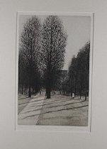 Image of Shadows, 1/55