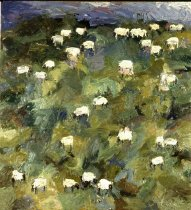 Image of Sheep #1