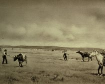 Image of EARLY DAY ROUNDUP AT POWDER RIVER