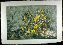 Image of SAGE AND SUNFLOWERS
