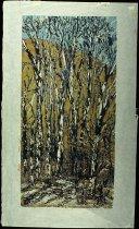 Image of Winter Cottonwoods II