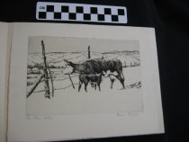 "Image of etching,""The Wire Gate"" cow and calf (2)"