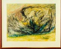 Image of Boxelder Tree