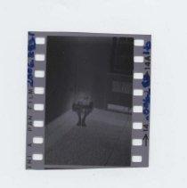 Image of 2006.283.1b - Negative, Film