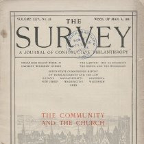 Image of The Survey
