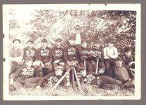 Image of Mixed Pickles baseball team