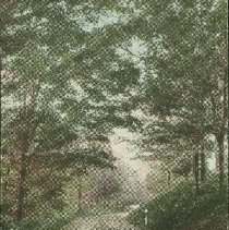 Image of The Dell, Woodstock - 1905 C