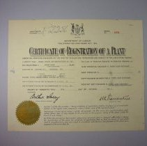 Image of Eureka Certificate of Registration of a Plant - 1963