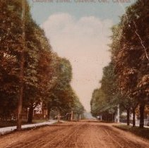 Image of Colborne Street - now known as Lakeshore Rd. East.