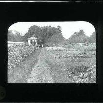 Image of 2002.092.020 - Transparency, Lantern-slide