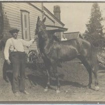 Image of 952-010 - Postcard Collection