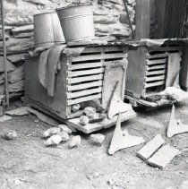 Image of HK-11-10-33 - Henry Kauffman Photograph Collection