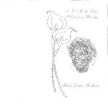 Image of 15-boo-119 - Program
