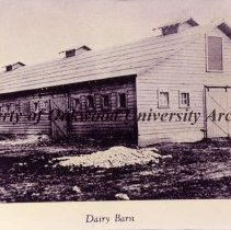 Image of 22-DAIRY-10 - Photograph