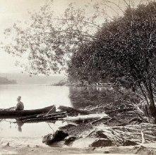 Image of 1977.218.2304 - 529. Lower Saranac Lake, Adirondacks