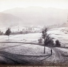 """Image of 1977.218.3190 - 736. """"The Giant"""" from St. Hubert's Inn, Adirondacks"""