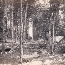 Image of 1977.218.3441 - Raquette Lake, East Vista, Camp Pine Knot.
