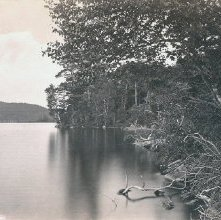 Image of 1977.218.3561 - View from Raquette Lake House