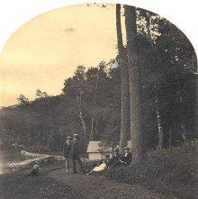 Image of 1977.218.5033 - 1295. Crosbyside, North Shore, looking North, Lake George