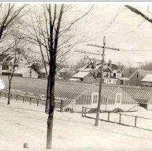 Image of 1978.003.0144 - Crandall Green House, Harrison Avenue.