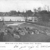 """Image of Winter Home of the Sheep, """"Franklin Field,"""" Dorchester.                                                                                                                                                                                                  - 2007.0060.092"""