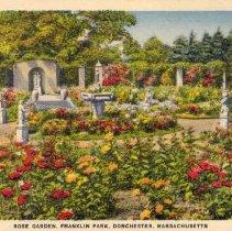 Image of Rose Garden, Franklin Park, Dorchester, Massachusetts                                                                                                                                                                                                      - 2007.0060.114
