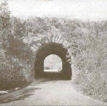 Image of Ellicott Arch, Franklin Park                                                                                                                                                                                                                                   - 2007.0060.118