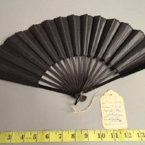Image of Fan