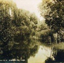 Image of 2002.14.98 - Aberjona River,  Winchester, Mass.